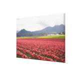 La tulipe gaie met en place la vallée de Skagit de Impressions Sur Toile