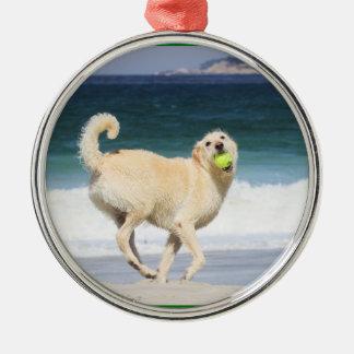 Labradoodle - glücklicher Tag auf dem Strand Silbernes Ornament