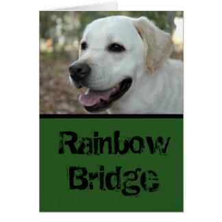 Labrador-Retriever-Beileid card3 Karte