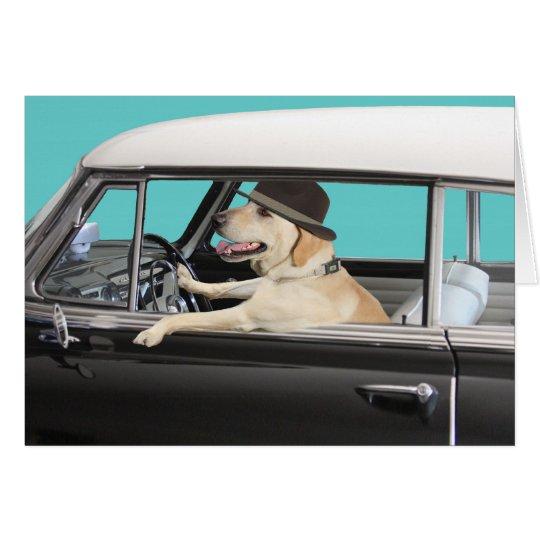 Labrador retriever, das klassisches Auto fährt Karte