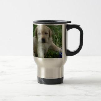 Labrador retriever reisebecher