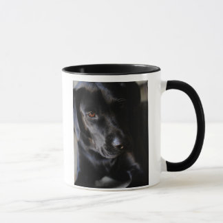 Labrador-Retriever-Tasse Tasse