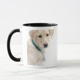 Labrador retriever-Welpe, HERR) Tasse