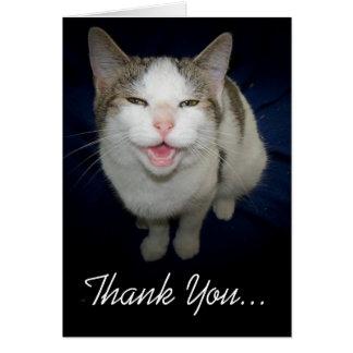Lächelnde Katze danken Ihnen zu kardieren Karte
