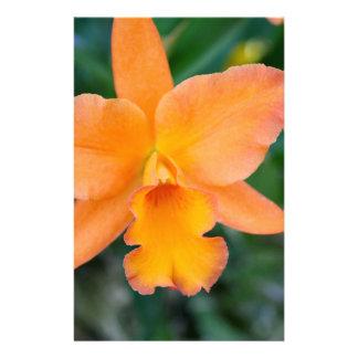 Lachsorchidee Briefpapier