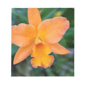 Lachsorchidee Notizblock