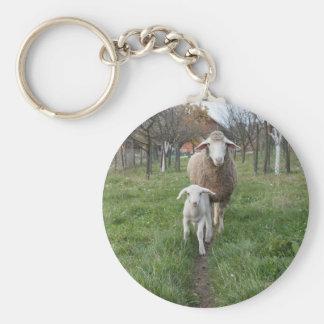 Lamm und Schafe Schlüsselanhänger