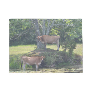 Land-Kühe Türmatte