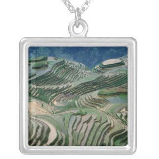 Landschaft der Reisterrassen im Berg, Versilberte Kette