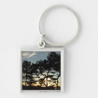 Landschaft des Torrey Kiefern-Sonnenuntergang-II Schlüsselanhänger