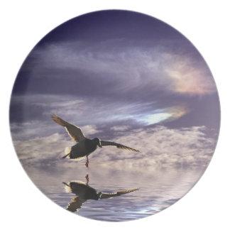 Landungs-Stockenten-Enten-u. Melaminteller