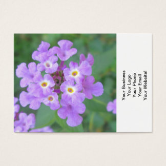 Lantana-Pflanzen-lila Blumen Visitenkarte