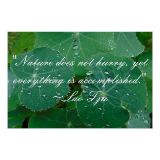 Lao Tzu Natur-Zitat-Plakat Poster