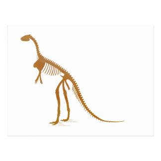 laosaurus Skelett Postkarte