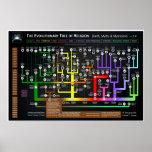 L'arbre évolutionnaire de la religion poster