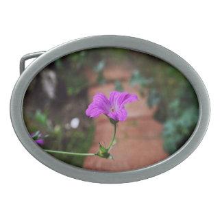 Lavendel-Blumen mit Inspirational Zitaten Ovale Gürtelschnallen