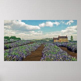 Lavendel-Feld-Druck Poster