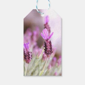 Lavendel-Geschenk-Umbau Geschenkanhänger
