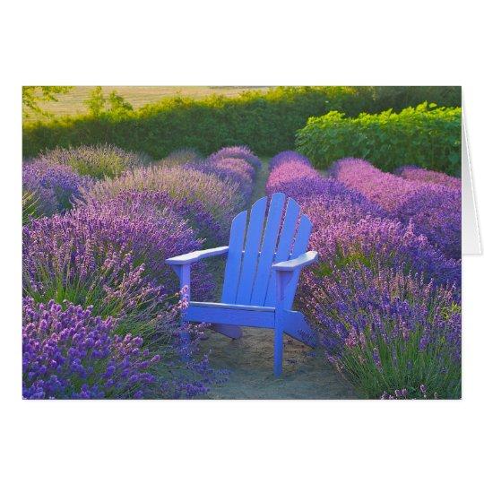 Lavendel-Gruß-Karte Grußkarte