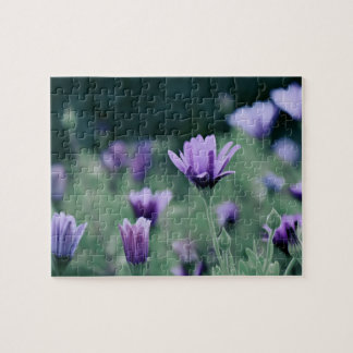 Lavendel-lila Blumen Foto Puzzles