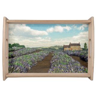 Lavendel stellt Serviertablett auf