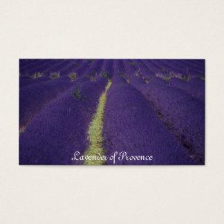 Lavendel von Provence Visitenkarte