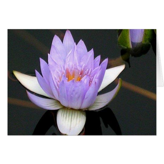 Lavendel-Wasser-Lilie Karte