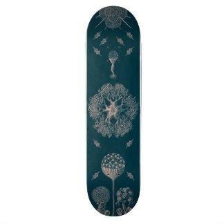 Le bleu de Haeckel Skateboard Old School 21,6 Cm