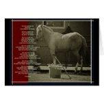Le cheval carte de vœux