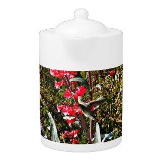 Le colibri dans l'arbre rouge fleurit pot de thé