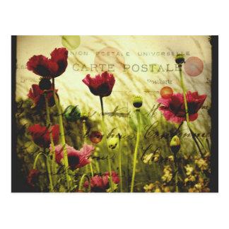 Le cru fleurit la carte postale