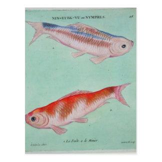 Le Fade, Le Minier, graviert von Francois Nicholas Postkarte