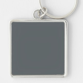 Le gris en acier a personnalisé la couleur porte-clefs