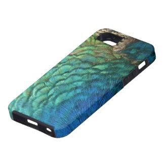 Le paon fait varier le pas de la conception coque iPhone 5 Case-Mate