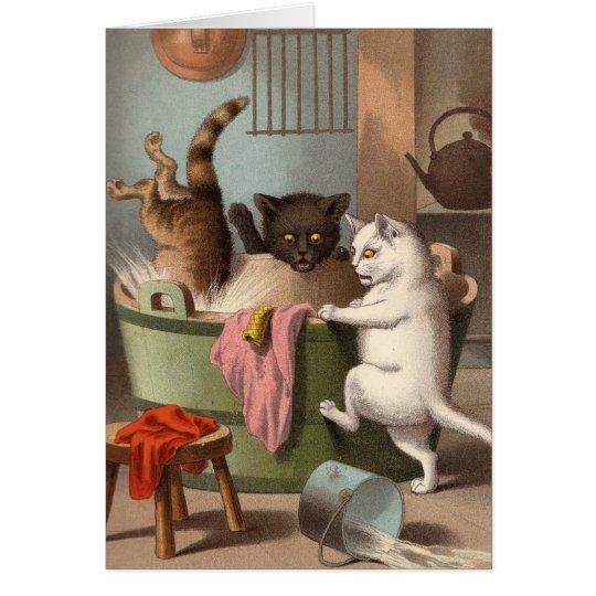 Leere Karte - freche Katzen-Reihe - Katzen Washday