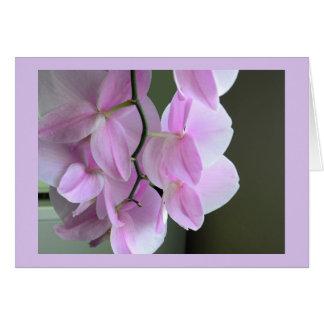 Leere Karte mit rosa Orchideen