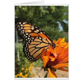 leere Monarchkarte Grußkarte