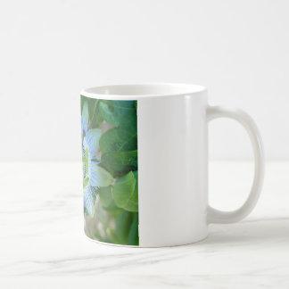 Leidenschafts-Blume Kaffeetasse