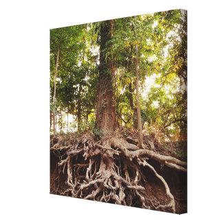 Leinwand-Baum-Bild Leinwanddruck
