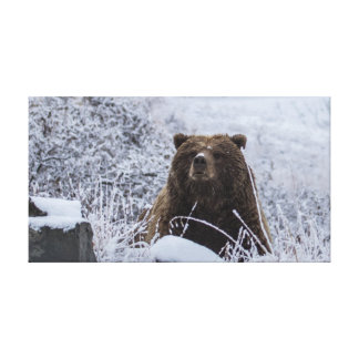 Leinwand-Druck des Alaskagrizzly-Bären Leinwanddruck