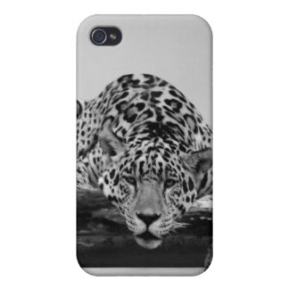 Leopard in Schwarzweiss iPhone 4/4S Cover