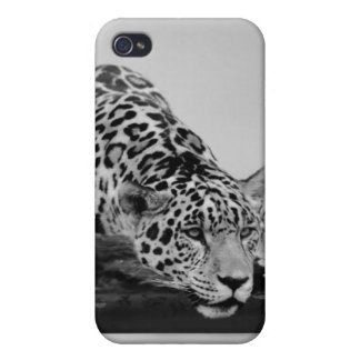 Leopard iPhone 4/4S Cover