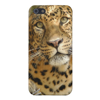 Leopard-Speck-Kasten Hülle Fürs iPhone 5