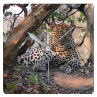 Leopard-Wanduhr Quadratische Wanduhr