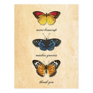 Les Papillons danken Ihnen Postkarte