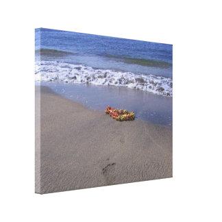 Leu am Strand Galerie Gefaltete Leinwand