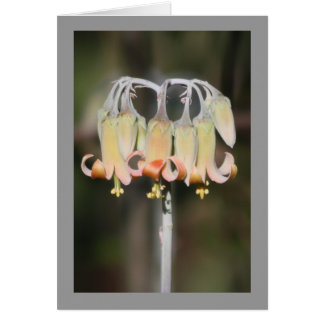 Leuchter-Blume Grußkarte
