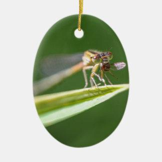 Libelle, die Moskito isst Ovales Keramik Ornament