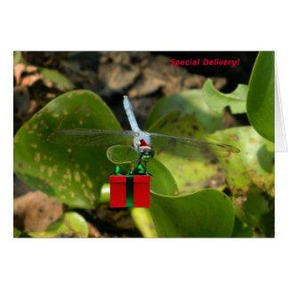Libelle Sankt Karte