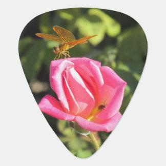 Libelle und Marienkäfer auf rosa Rose Plektron